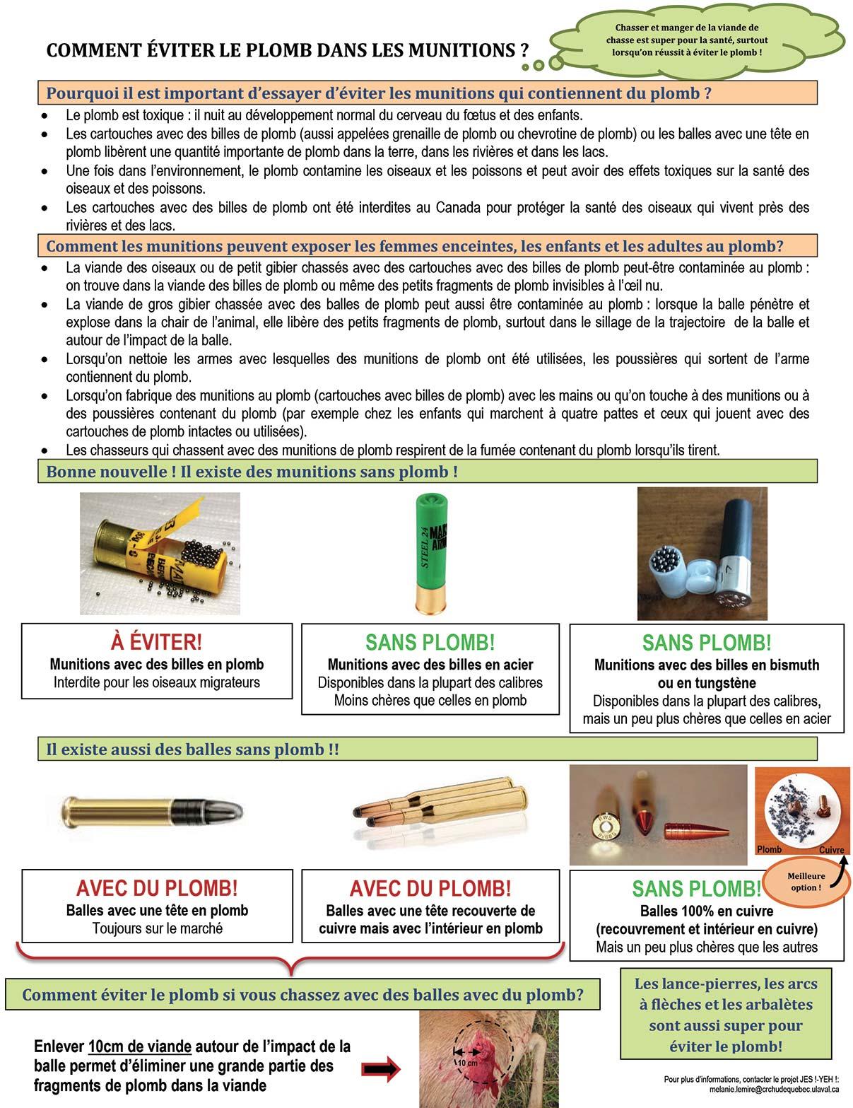 L'impact des munitions de plomb sur la santé